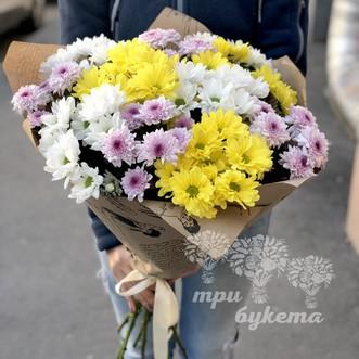Желтые и белые хризантемы