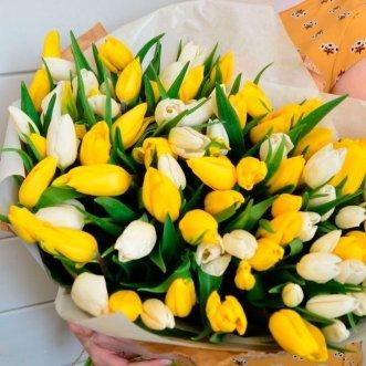 101 желтый и белый тюльпан