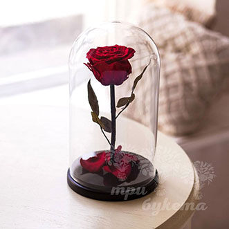 Красная роза в колбе 26 см