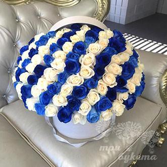 101 синяя и белая роза в коробке