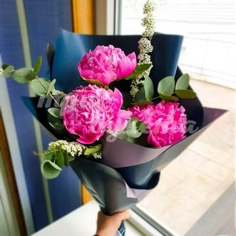 3 розовых пиона Сара Бернар